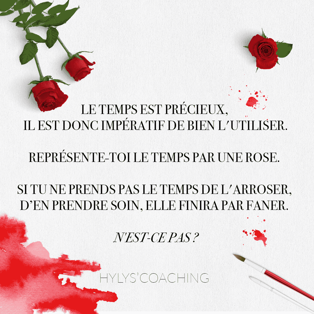 citation rose rouge encre pinceau